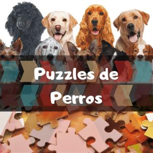 Los mejores puzzles de animales salvajes - Puzzles de perros - Comprar puzzle de perro - razas de perros