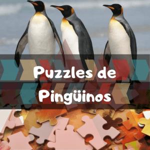 Los mejores puzzles de animales salvajes - Puzzles de pingüinos - Comprar puzzle de pingüino