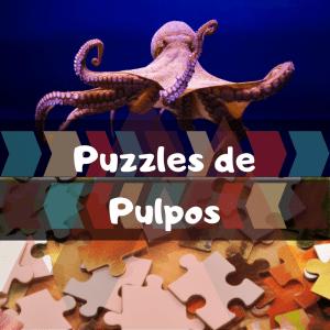 Los mejores puzzles de animales salvajes - Puzzles de pulpos - Comprar puzzle de pulpo