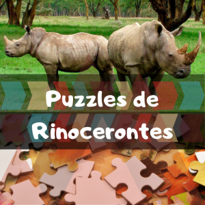 Los mejores puzzles de animales salvajes - Puzzles de rinocerontes - Comprar puzzle de rinoceronte