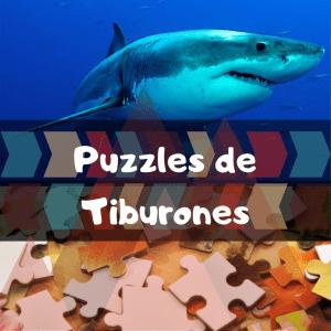 Los mejores puzzles de animales salvajes - Puzzles de tiburones - Comprar puzzle de tiburón