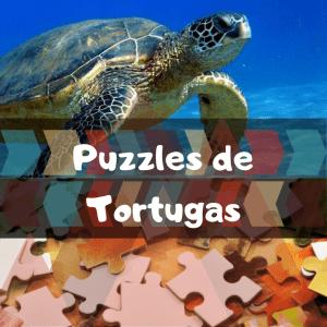 Los mejores puzzles de animales salvajes - Puzzles de tortugas - Comprar puzzle de tortuga