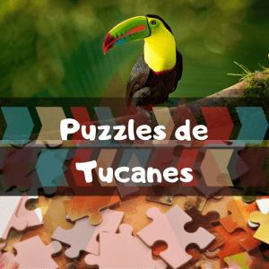 Los mejores puzzles de animales salvajes - Puzzles de tucanes - Comprar puzzle de tucán