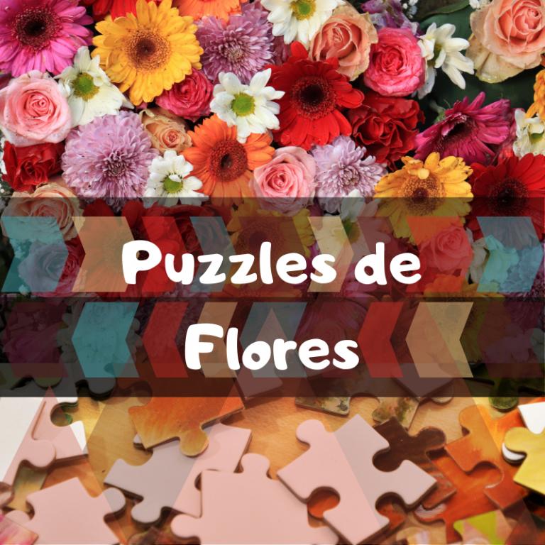 Los mejores puzzles de Flores
