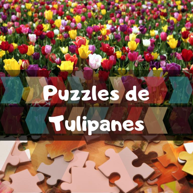 Los mejores puzzles de Tulipanes